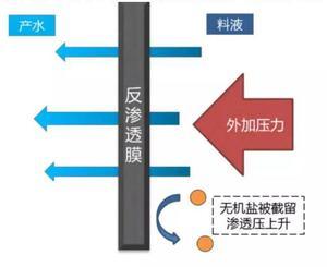 高盐废水膜浓缩处理技术1.jpg